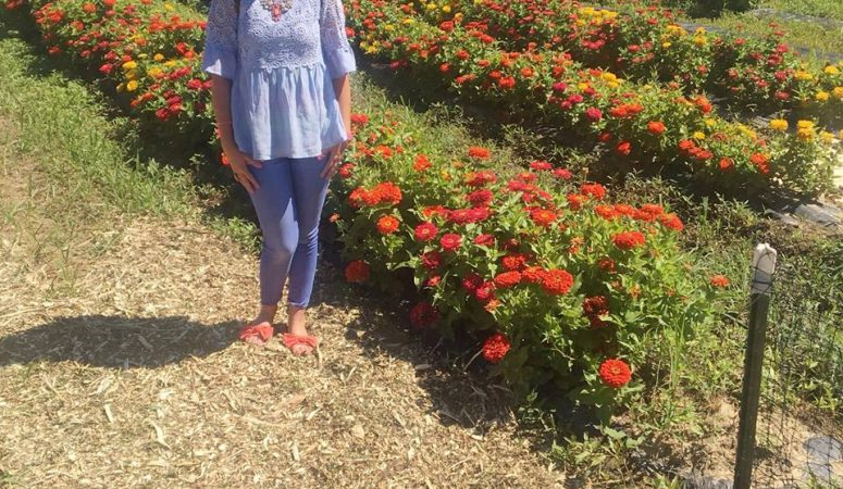 Butterfly Festival at Blooms and Berries Farm Market July 7-15th, 2018