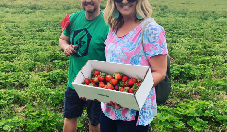 Our visit to Bell's Strawberry Farm in Hagerstown, Indiana